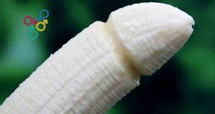 tamaños de penes