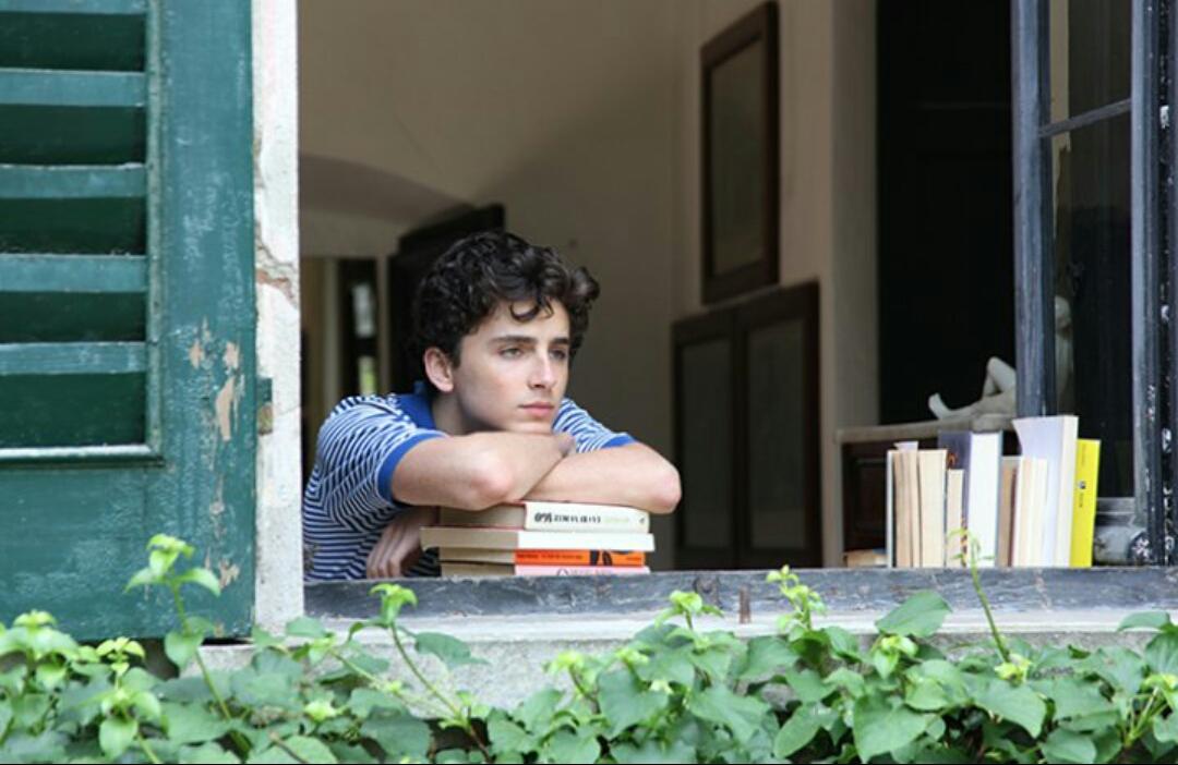 'Call Me By Your Name' un romance gay que revoluciona Sundance