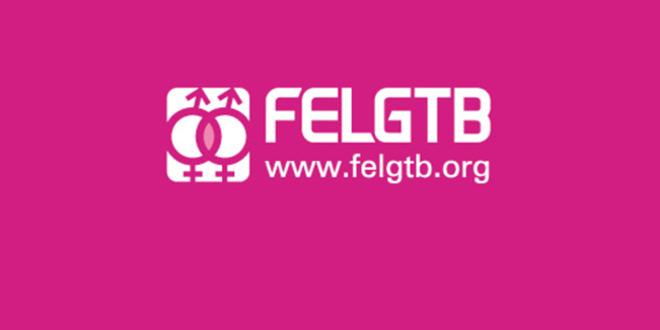 Federación Estatal de Lesbianas, Gais, Transexuales y Bisexuales