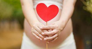 Ley de Gestación Subrogada