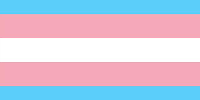 Photo of El Congreso aprueba la reforma de la ley de identidad de género