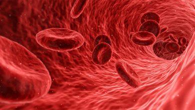Photo of Una vacuna contra el VIH se probará este mismo año en España