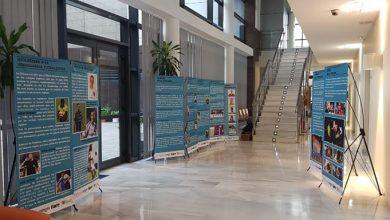 Photo of «Abriendo armarios en el deporte» la exposición para luchar contra la lgtbifobia en el ámbito deportivo