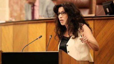 Photo of El Consejo Andaluz LGTBI se constituirá en septiembre