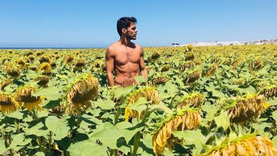 famosos desnudos verano 2019