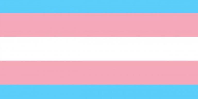 visibilidad trans. Manifiesto autodeterminación personas trans