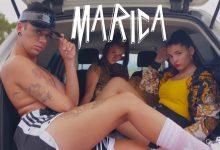 Photo of 'Marica' el nuevo tema de Yogurinha Borova que más vas a perrear
