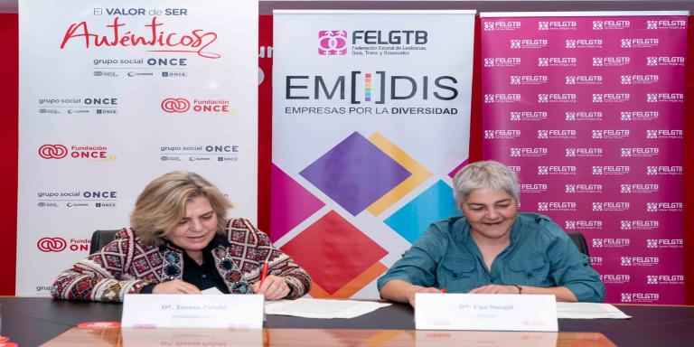 Informe EMIDIS 2019