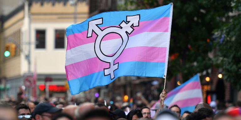 Ley trans Hungria