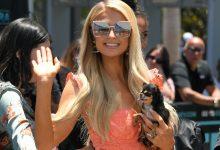 Photo of Paris Hilton: «Los gays son las personas más viciosas del mundo… La mayoría tiene SIDA»