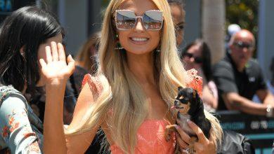 Paris Hilton Homofobia SIDA