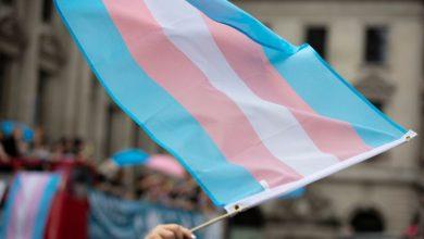 Proyecto ley trans Novedades