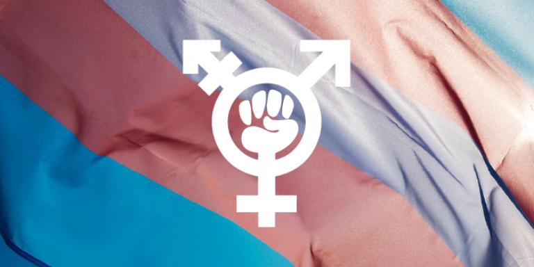 Legislacion Trans
