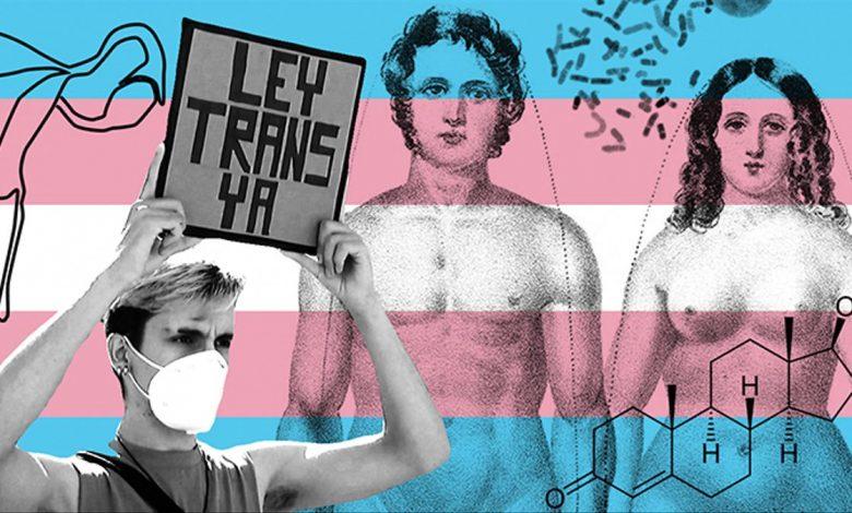 Feminismo derechos Trans