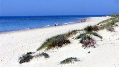 Cruising Punta Candor Playa Gay Rota